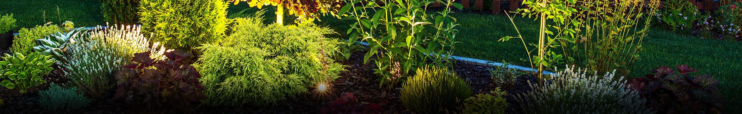 Outdoor Lichtideen und für die Beleuchtung von Beet und Garten entdecken